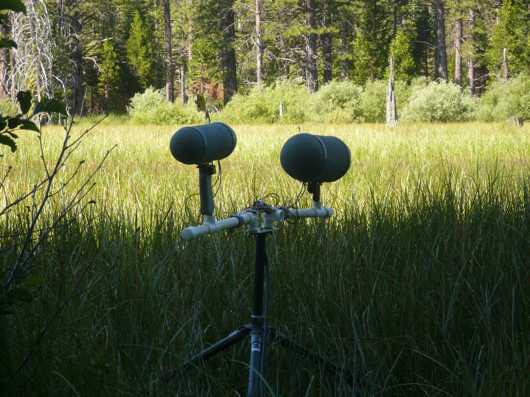 Double MS gregga array at Madora Lake, Plumas County, CA